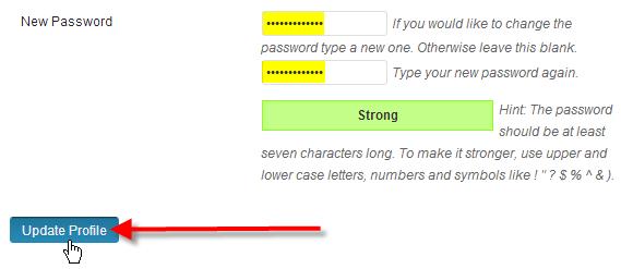 Change WordPress Password via Dashboard 3