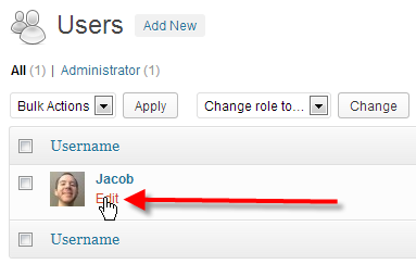 Change WordPress Password via Dashboard 2