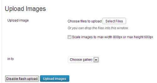 Embed Media Files in WordPress Site 3