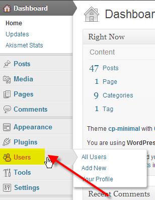 Chnage WordPress Password via Dashboard 1